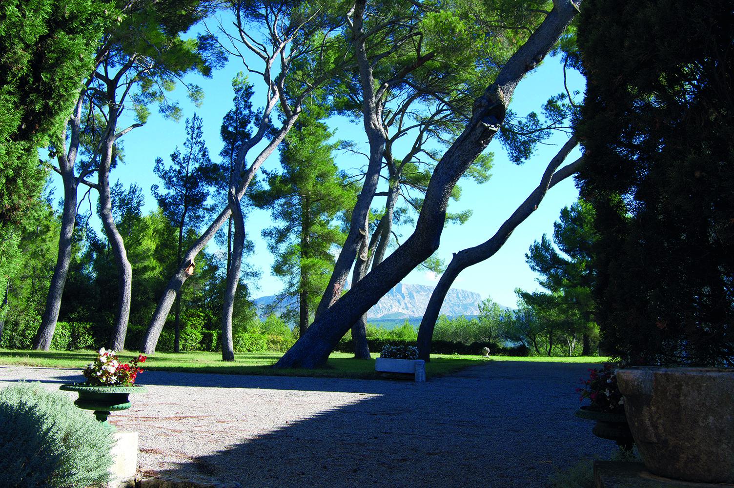AOP Palette - Cote de Provence